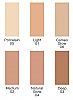 Mineral Sheer Tint SPF 20 Available Shades