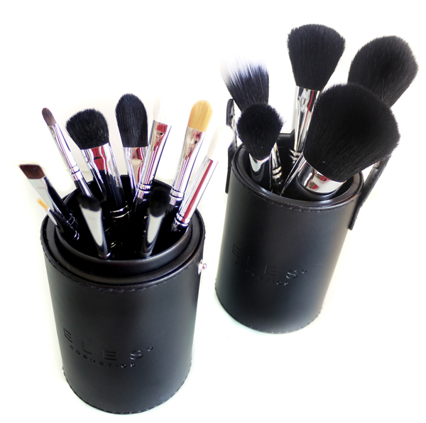Pro Brush Gift Set